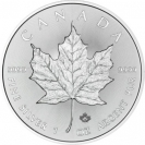 Stříbrná mince Maple Leaf 1 Oz 2016